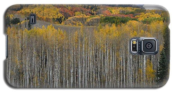Colorado Splendor Galaxy S5 Case