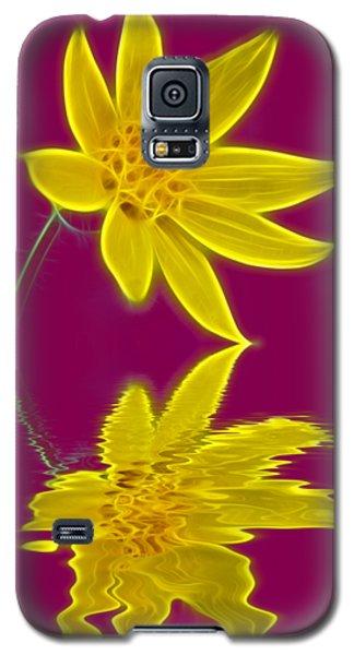 Colorado Wildflower Galaxy S5 Case by Shane Bechler
