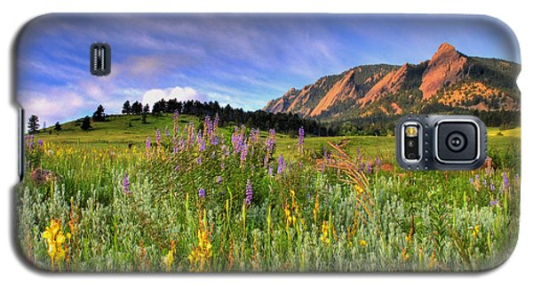 Landscapes Galaxy S5 Case - Colorado Wildflowers by Scott Mahon