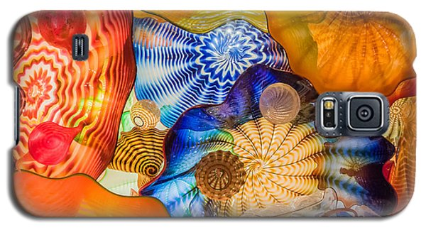 Colored Glass Galaxy S5 Case by Roger Mullenhour