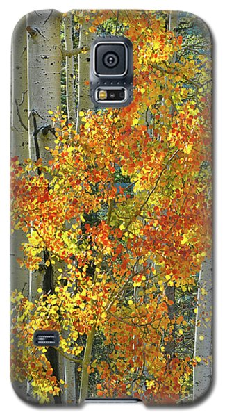 Colorful Aspen Along Million Dollar Highway Galaxy S5 Case
