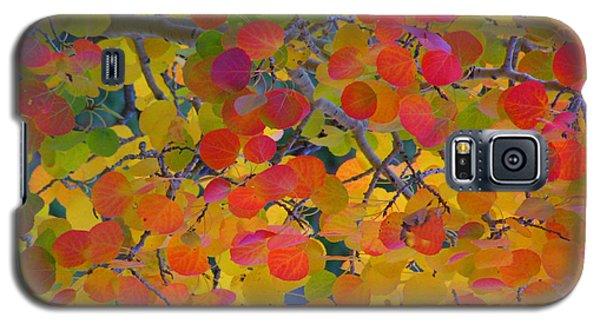 Colorful Aspen Galaxy S5 Case