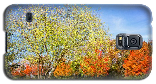 Colorful Backyard Scene Galaxy S5 Case