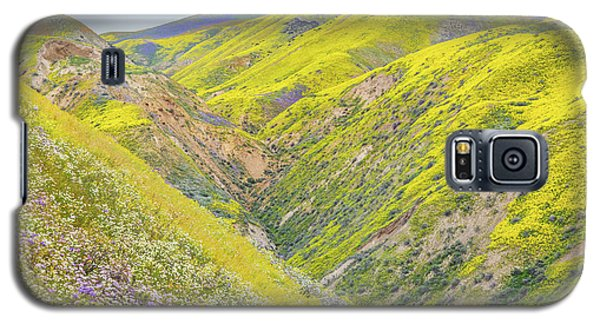 Galaxy S5 Case featuring the photograph Colorful Canyon by Marc Crumpler