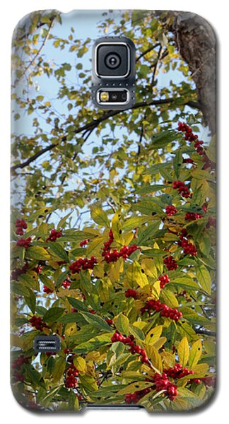 Galaxy S5 Case featuring the photograph Colorful Contrasts by Deborah  Crew-Johnson