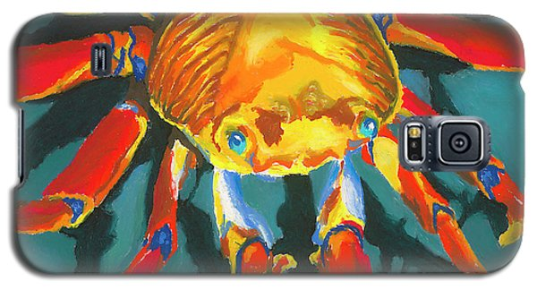 Colorful Crab II Galaxy S5 Case