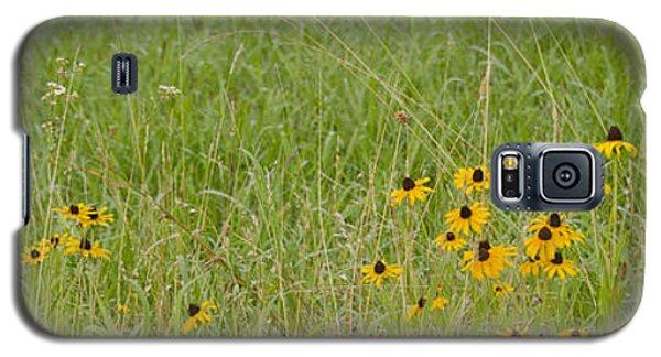 Colorful Field Galaxy S5 Case