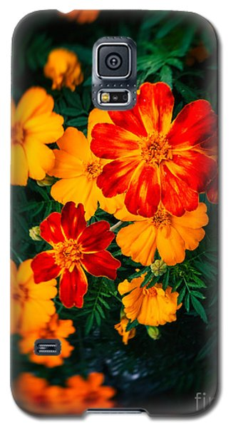 Colorful Flowers Galaxy S5 Case