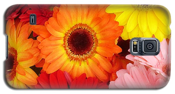 Colorful Gerber Daisies Galaxy S5 Case