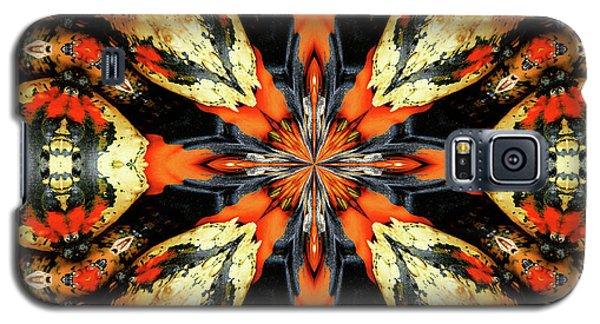 Colorful Gourds Abstract Galaxy S5 Case