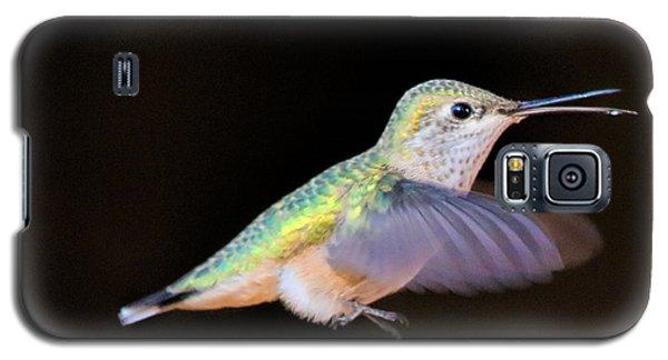 Colorful Hummingbird Galaxy S5 Case