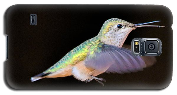 Colorful Hummingbird Galaxy S5 Case by Dorothy Cunningham