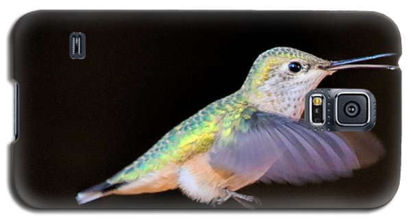 Colorful Hummingbird Galaxy S5 Case