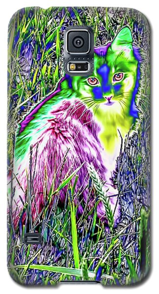 Colorful Kitty Galaxy S5 Case