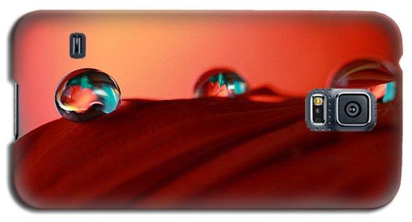 Colorful Macro Water Drops Galaxy S5 Case by Angela Murdock