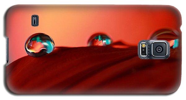 Colorful Macro Water Drops Galaxy S5 Case