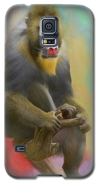 Colorful Mandrill Galaxy S5 Case