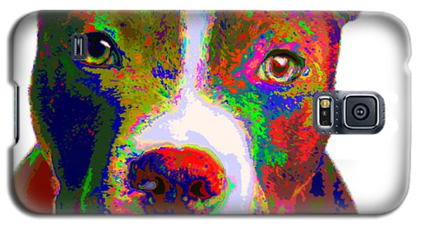 Colorful Pit Bull Terrier  Galaxy S5 Case