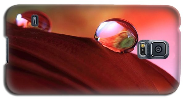 Colorful Reflections Galaxy S5 Case