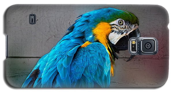 Galaxy S5 Case featuring the photograph Colorful by Robert Pilkington