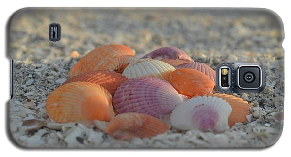Galaxy S5 Case featuring the photograph Colorful Scallop Shells by Melanie Moraga
