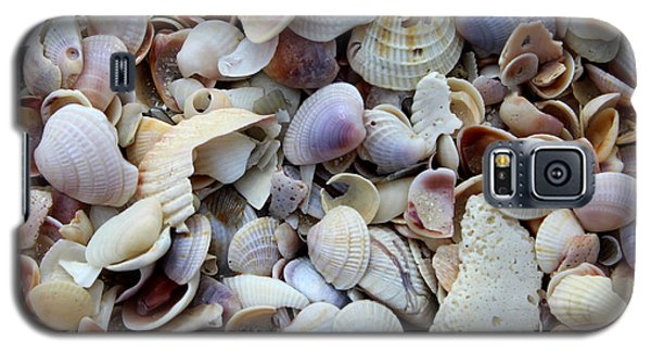 Galaxy S5 Case featuring the photograph Colorful Shells by Jeanne Forsythe