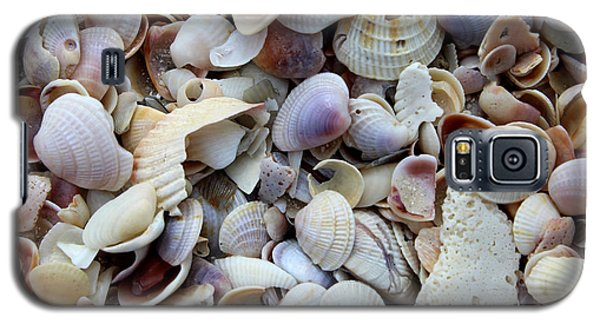 Colorful Shells Galaxy S5 Case