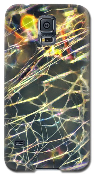 Rainbow Network Galaxy S5 Case