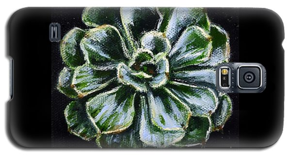 Colorful Succulent Galaxy S5 Case by Sandra Estes