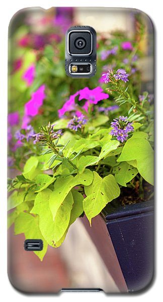 Colorful Summer Flowers In Window Box Galaxy S5 Case