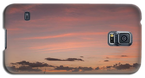 Colorful Sunset Over The Wetlands Galaxy S5 Case
