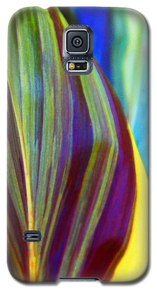 Colorful Ti Leaves Galaxy S5 Case by Kerri Ligatich