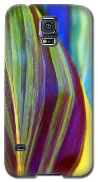 Colorful Ti Leaves Galaxy S5 Case