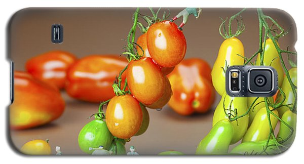 Galaxy S5 Case featuring the photograph Colorful Tomato Harvest Little People On Food by Paul Ge