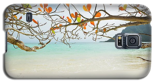 Colorful Tree North Shore Galaxy S5 Case