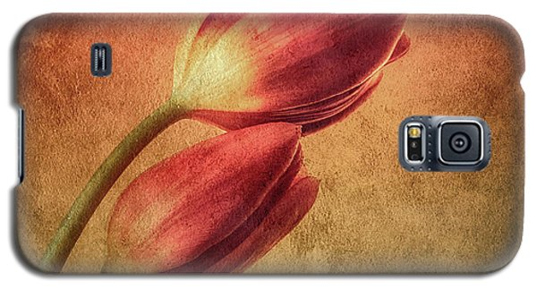 Colorful Tulips Textured Galaxy S5 Case
