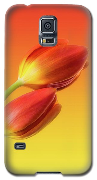 Colorful Tulips Galaxy S5 Case