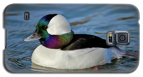 Colorful Waterfowl Galaxy S5 Case