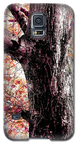 Colors And Texture  Galaxy S5 Case