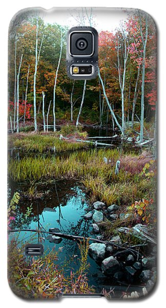 Colors By The Stream Galaxy S5 Case by Joseph G Holland
