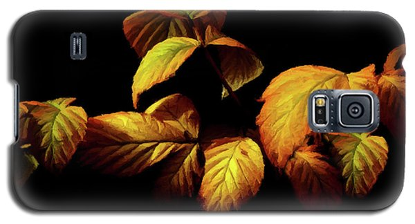 Colors Of Autumn Memories  Galaxy S5 Case by David Dehner