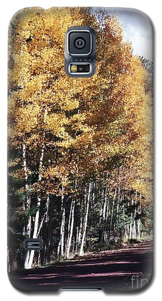 Galaxy S5 Case featuring the photograph Colors Of Greer by Juls Adams