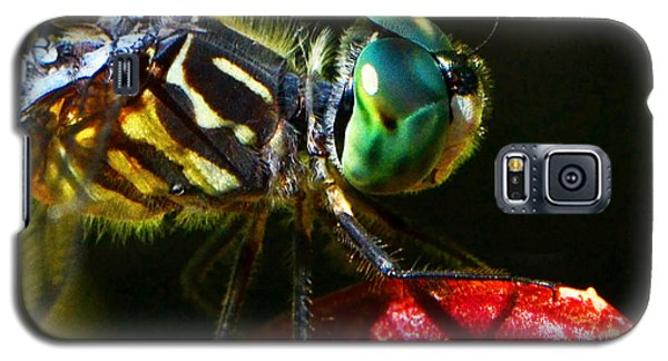 Galaxy S5 Case featuring the photograph Colors Of Nature - Dragonfly On A Pitcher Plant 007 by George Bostian
