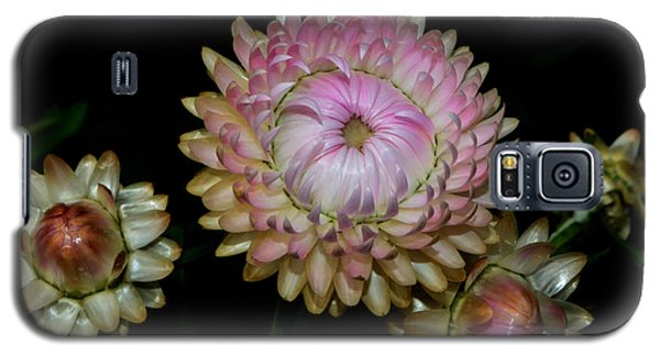 Galaxy S5 Case featuring the photograph Colors Of Nature - Grand Opening Stages 001 by George Bostian