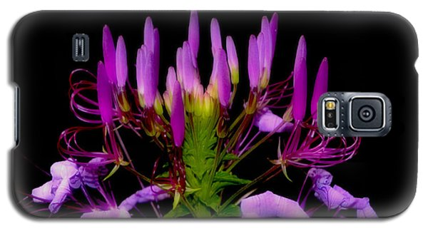Galaxy S5 Case featuring the photograph Colors Of Nature - Lavender 001 by George Bostian
