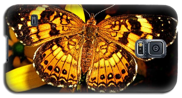 Colors Of Nature - Painted Lady Butterfly 002 Galaxy S5 Case