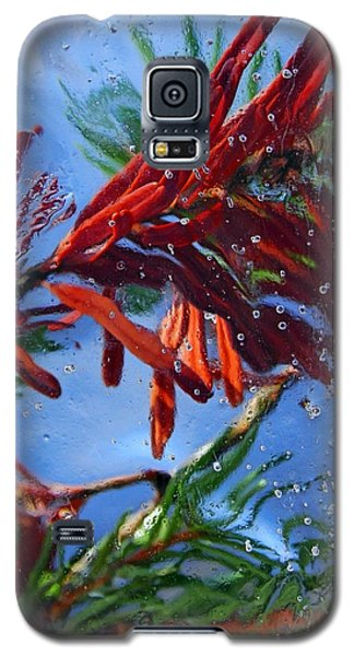 Colors Of Nature Galaxy S5 Case