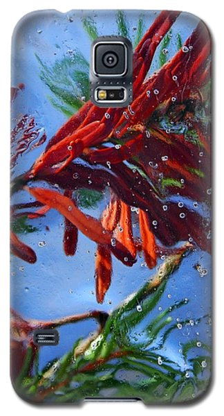 Colors Of Nature Galaxy S5 Case by Sami Tiainen