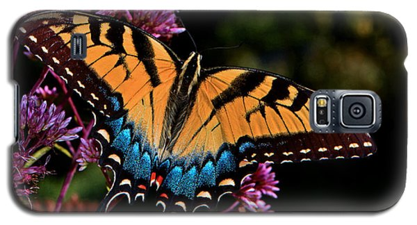 Galaxy S5 Case featuring the photograph Colors Of Nature - Swallowtail Butterfly 004 by George Bostian