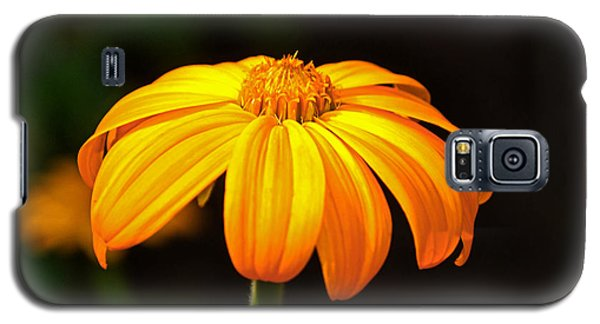 Galaxy S5 Case featuring the photograph Colors Of Nature - Yellow Flower 020 by George Bostian